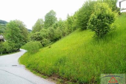 TOP-Gelegenheit - Größeres Hang-Grundstück in der Stadt Waidhofen an der Ybbs!