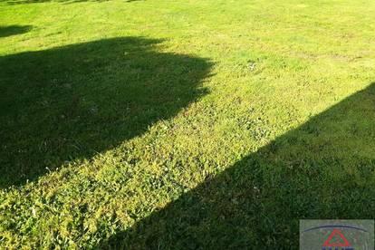Sonniger Baugrund mit Gartenhütte in ruhiger Lage!