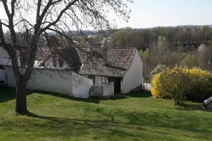 Günstiges Haus mit Garten zu verkaufen!