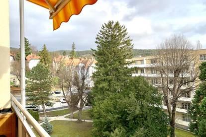 Tolle Maisonettewohnung in Grünruhelage - Baden