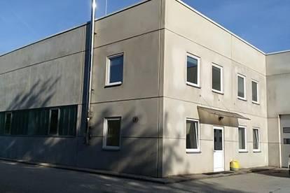 Büro- und Schauraumflächen in Wels Nord - Autobahnnähe an Eferdingerstraße B137  (Bauteil 1)