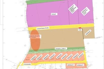 MB-Gebiet in Wels-Unterleithen - DER Standort für IHR Unternehmen (Größe dzt. noch flexibel gestaltbar)