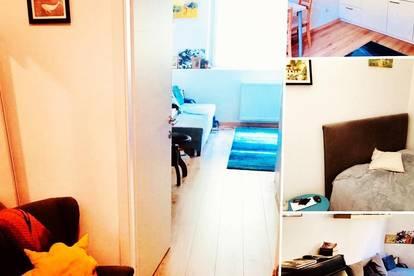 ohne Provision: 1-Zimmer-Wohnung mit Schlafniesche und AAP am Mitterweg