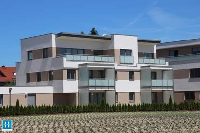GOOD LIVING - Gemütliche 54,12qm Penthouse-Wohnung mit Dachterrasse am Ortsrand von Eferding zu vermieten