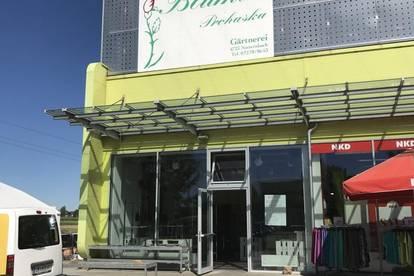 provisionsfrei - kleines 65m² Geschäftslokal in Frequenzlage - CITY CENTER PEUERBACH