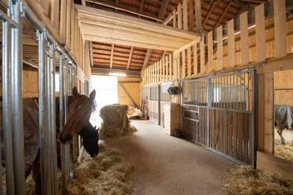 Pferdehof in Leonstein