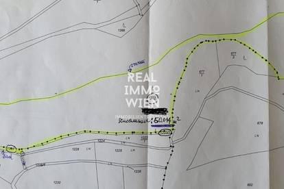 5 Hektar Wald Grundstück