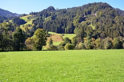 3.000 qm Grundstück in Mischgebiet - Aurach