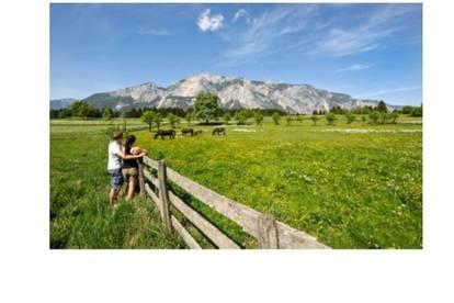Investoren aufgepasst! Touristisches Projekt in schönster Lage Kärntens