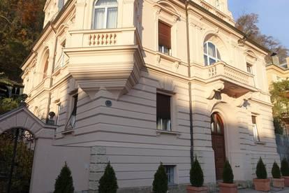 Großzügige historische Villa in einmaliger Lage für Privatpersonen / Firma zu mieten