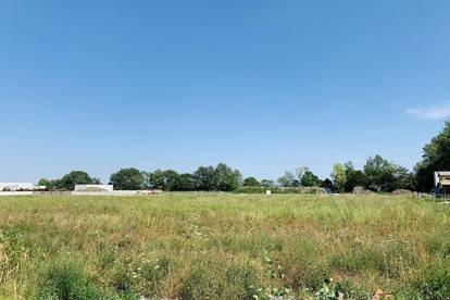 9.000m2 Gewerbegrundstück in Unterwaltersdorf zu vermieten