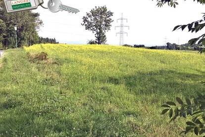 In Grünruhelage liegt dieses gut geschnittene Grundstück!