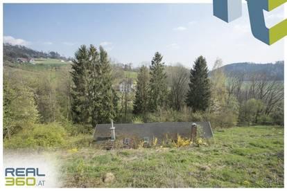 Hanggrundstück mit netter Holzhütte in der Koglerau zu verkaufen!