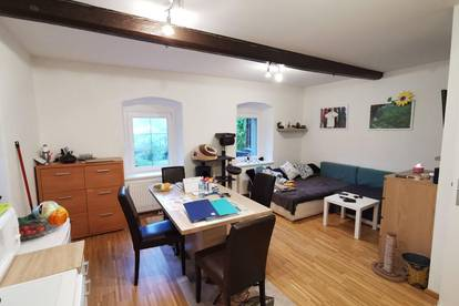 Neuwertige Wohnung in Sonnenlage Region Bad Kleinkirchheim. 3 Zimmer. Derzeit vermietet.