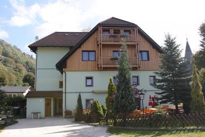 Neuwertige Wohnung in Sonnenlage Region Bad Kleinkirchheim. 1 SZ. Derzeit vermietet.
