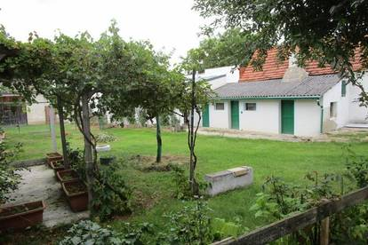Bauernhaus mit 5 Zimmer und großem Grund zur Pferdehaltung und Stadel!