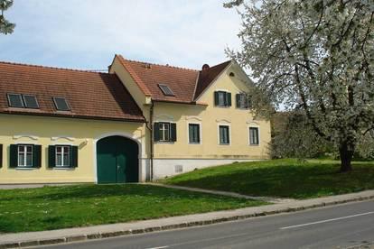 Ruhige Wohnung in Neustift bei Sebersdorf zu vermieten