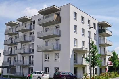 Mietwohnungen - PROVISIONSFREI - Neubau - ab sofort