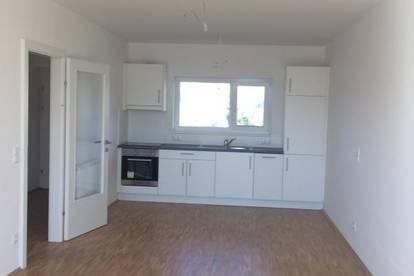 Süd-Ausrichtung | ULMENHOF | 2-Zimmer | Balkon | provisionsfrei | ab sofort |