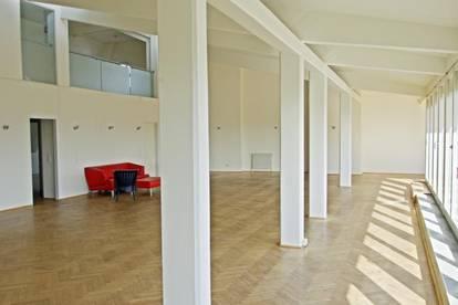 Loft - Studio - Atelier - Terrassenwohnung -  oder?