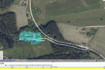 ** Rohbau- tlw. Edelrohbau, viel Grundfläche – Bastlerhaus mit großem Potential