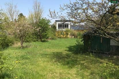 Sehr gut bebaubarer ebener Baugrund in ruhiger Grünlage/ Wohngebiet.