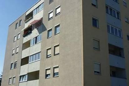 2344 Maria Enzersdorf, Johannesstraße, ältere 40m² Garconniere, Loggia, 3. Liftstock