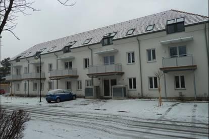 Hohlfeldergasse 28-30 BETREUTES WOHNEN