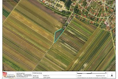 Nickelsdorf - exklusive Baugrundstücke mit Weitblick umgeben von Grünland