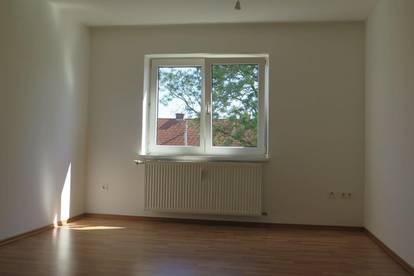 ruhige 2 Zi Wohnung im Franckviertel mit Küche und allgemeinen schönen Garten