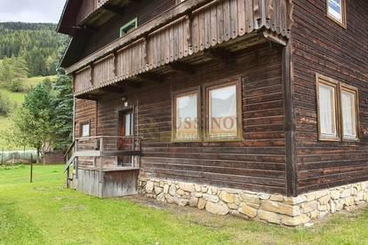 Heimeliges Holzhaus in der Ebene-Reichenau