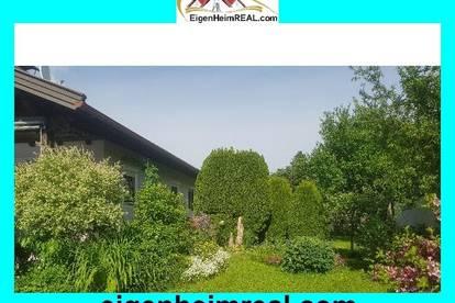 Bungalow mit Gartenparadies im Zentrum von Feldkirchen zu mieten