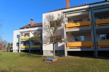 3 Zimmerwohnungen mit großen Balkonen in Wagna