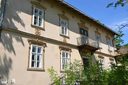 LETZTE CHANCE! GRÜNDERZEITVILLA und BURGFRIED in uneinsehbarem Schlosspark nur 50 Minuten von Wien
