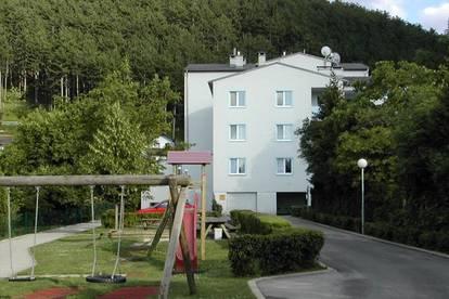 Wohnung bezugsfertig in Grafenbach-St. Valentin