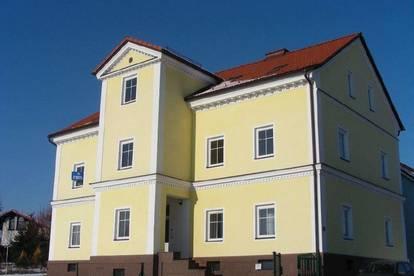 Neue Küche,Gemeinschaftsgarten! 2-Zimmer!Großzügige, helle und sanierte Wohnung!Single-PärchenHIT!
