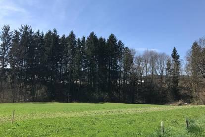 Gewerbegrund in Steuerberg in Feldkirchen in Kärnten