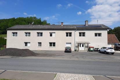 Mietshaus mit viel Potential und eigener Masterwohnung - Interessant für Kapitalanleger - nähe Jennersdorf
