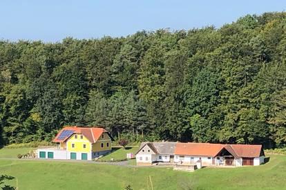 Schönes Einfamilienhaus in Ruhe- und bzw. Einzellage nähe Therme Loipersdorf