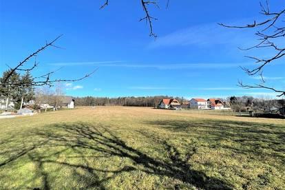 Großes Baugrundstück in Neudorf bei Ilz - über 4000 m²