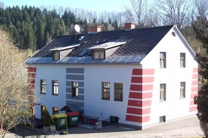 Dachgeschosswohnung in Krieglach