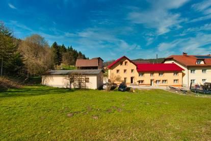 Sacherl mit zwei renovierten Wohnungen - Natur genießen!