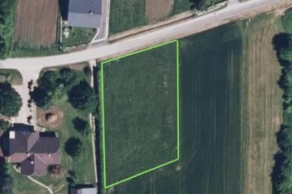 Nähe Thermenregion Loipersdorf: Baugrundstück in ruhiger Lage