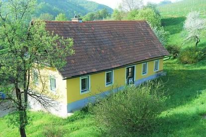 Bauernhaus - neue renoviert, riesige Nebenräume