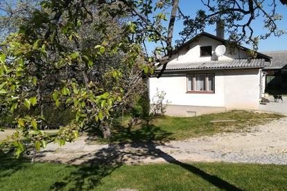 Kleines Haus im Grünen