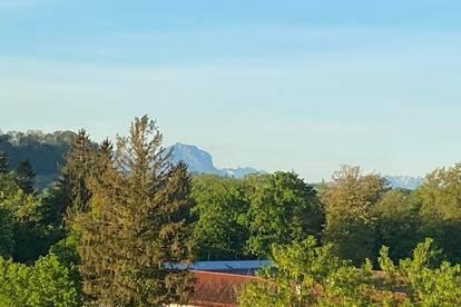 perfekter Traunstein-Blick - Top sanierte Eigentumswohnung im Zentrum von Wels (süd-westliche Ausrichtung) - KEINE MAKLER