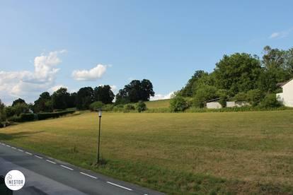Baugrundstück in Stegersbach (Südburgenland) gesamt 4611 Quadratmeter zu verkaufen - TOP Lage nähe Stegersbacher Therme!