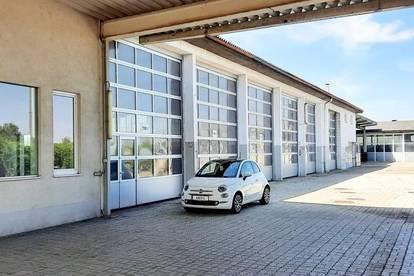 Lagerhallen (teils über 5m Raumhöhe), Schauraum, Freiflächen