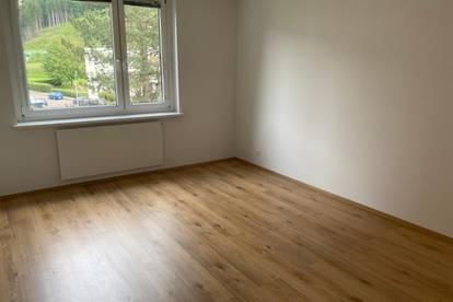 Wohnung in Göss zu vermieten