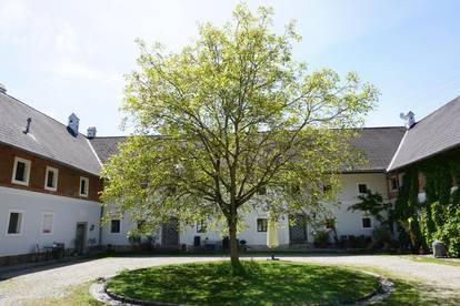 Große Wohnung mitten im Grünen (provisionsfrei + ohne Ablöse)